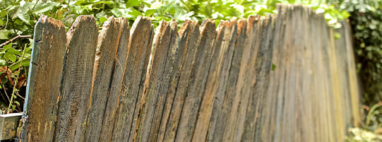 Fence Installation Mistakes to Avoid