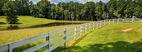 Which Fences Are the Most Affordable?