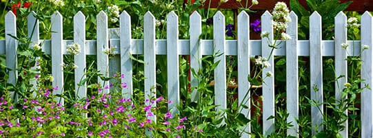 Best Types of Garden Fences – The Ultimate Guide